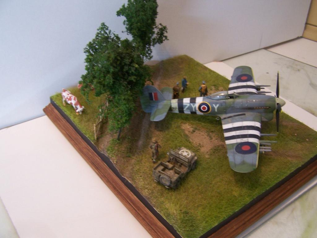 Tueurs de chars  en Normandie ....  100_1284