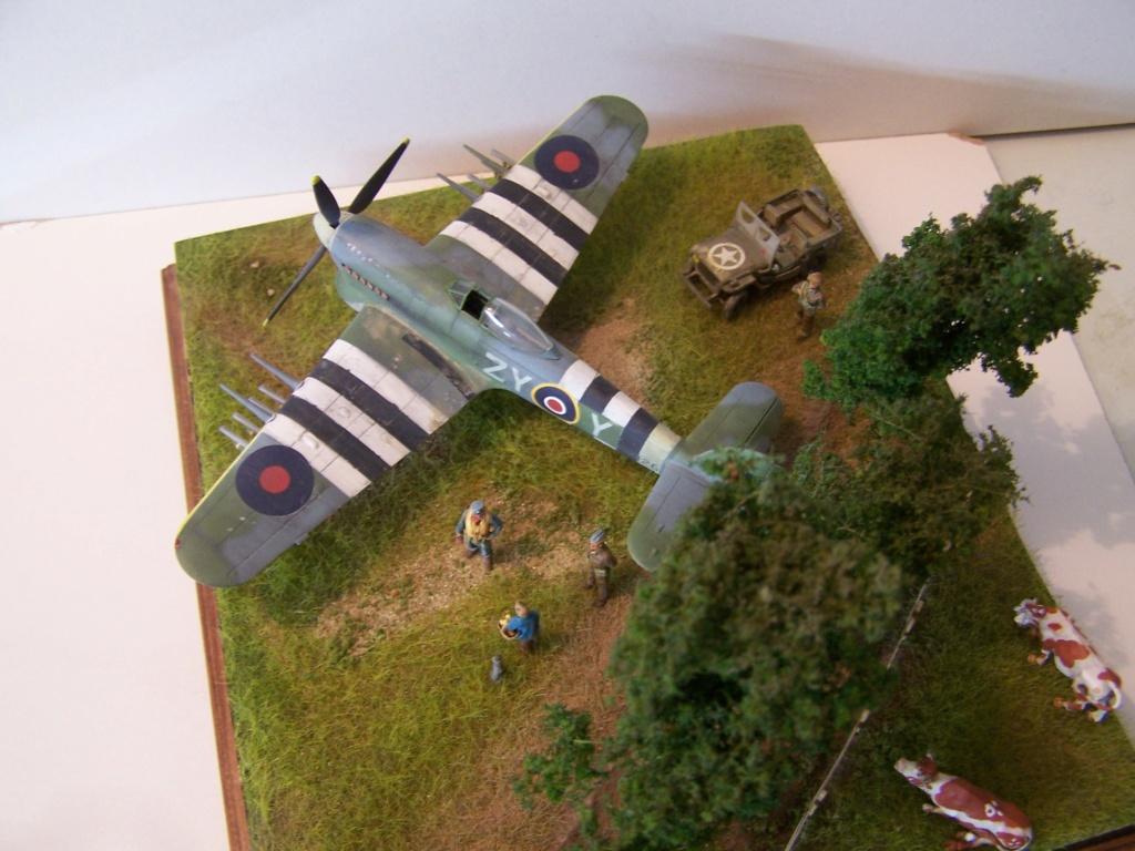 Tueurs de chars  en Normandie ....  100_1288