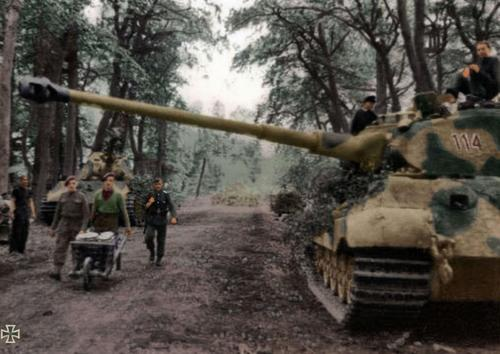 Le Tigre,les Tommies et la brouette en Normandie  Cantel10