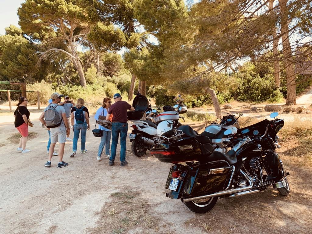 Road King uniquement, combien sur Passion-Harley  - Page 20 D839ec10