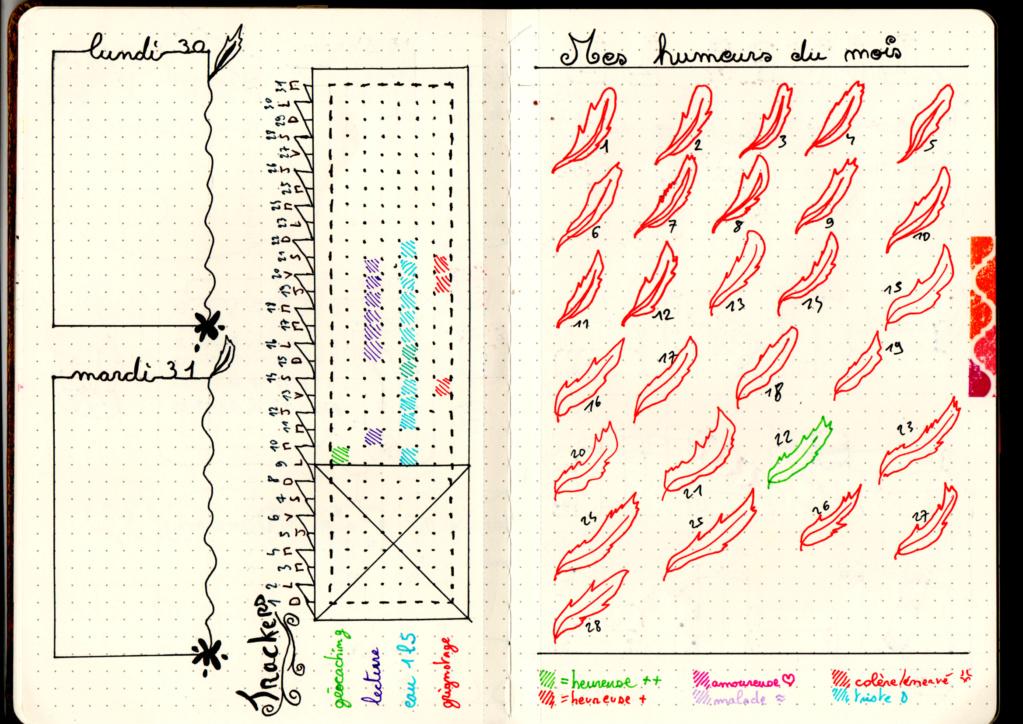 Mon Bullet Journal Img20113