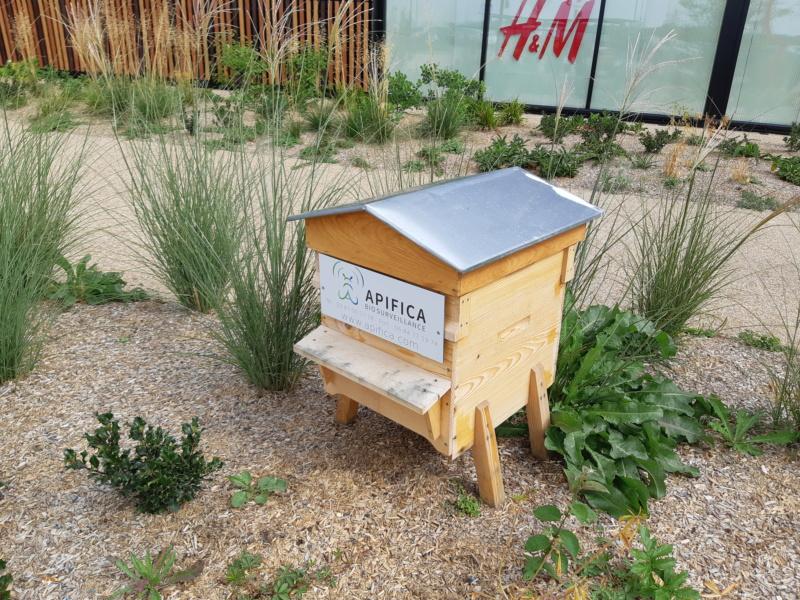 [Fabrication en série] Des ruches en pagaille - Page 3 20180895