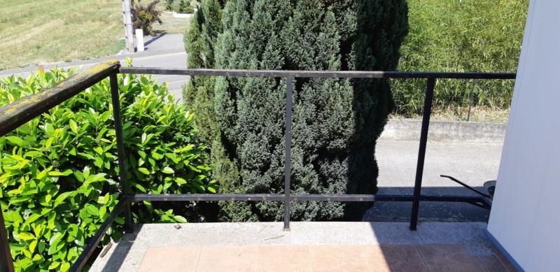 ENCORE UN TRUC A REFAIRE QUI A SOUFFERT AVEC LE TEMPS (balustrades du balcon) - Page 3 20190827