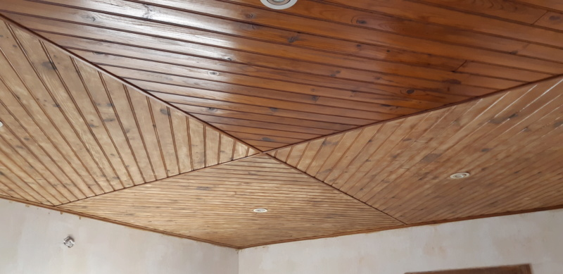 RENOVATION murs et plafond du SALON 20200268