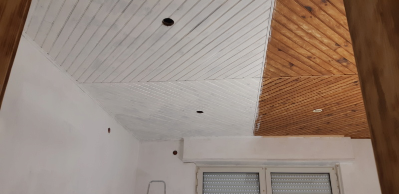 RENOVATION murs et plafond du SALON 20200270