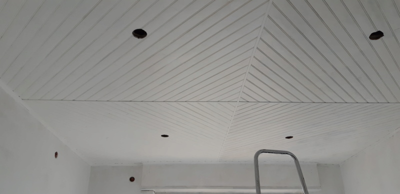RENOVATION murs et plafond du SALON 20200271