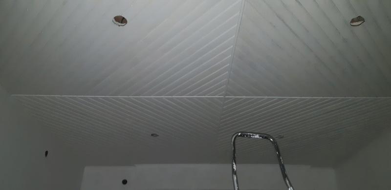 RENOVATION murs et plafond du SALON 20200272