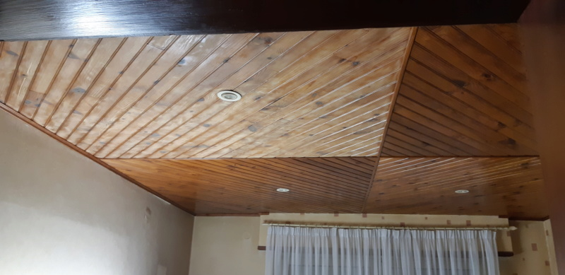 RENOVATION murs et plafond du SALON 20200275