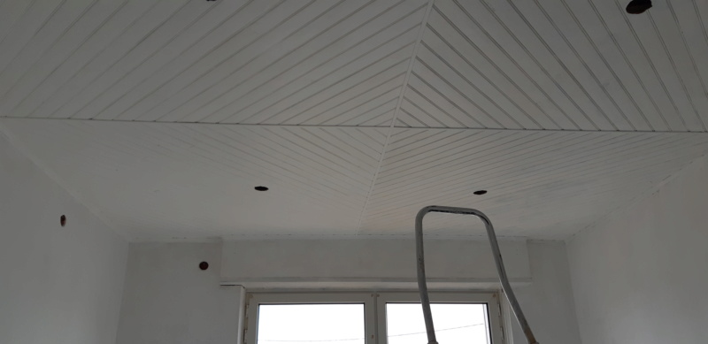RENOVATION murs et plafond du SALON 20200277