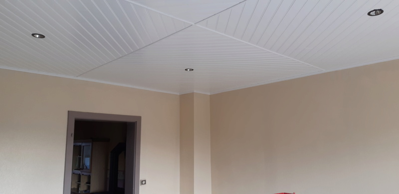 RENOVATION murs et plafond du SALON 20200320