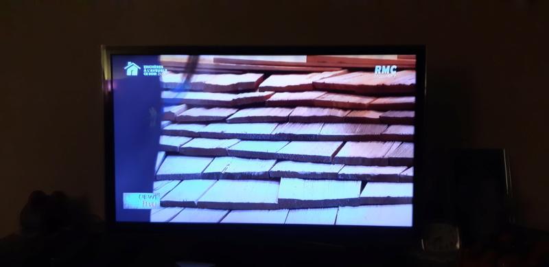 construction cabane de sorcière,  quelle colle pour bardeau bois?  - Page 2 20210419