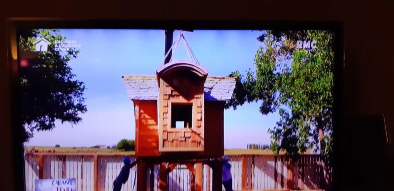 construction cabane de sorcière,  quelle colle pour bardeau bois?  - Page 2 20210422