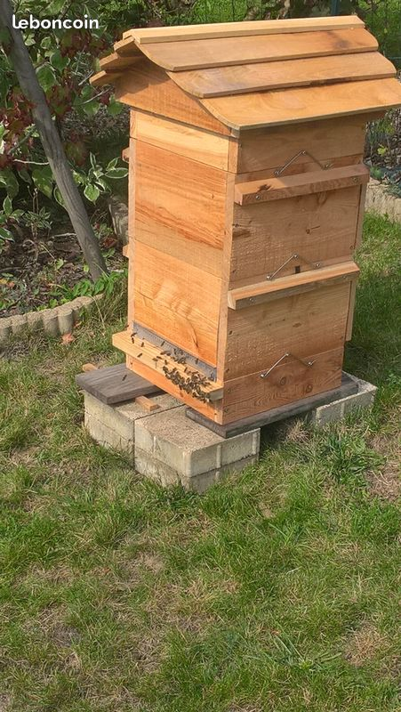 [Fabrication en série] Des ruches en pagaille - Page 3 72b1d010