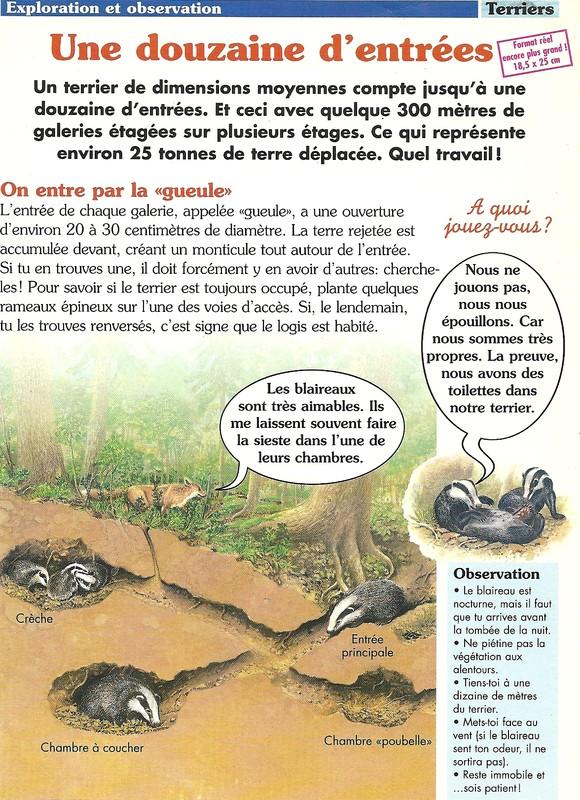 Le terrier du meles - Page 7 C7e9c510
