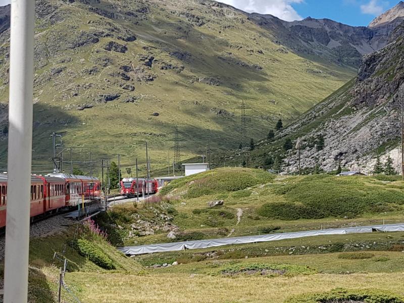 Escapada al Bernina Express 20180880