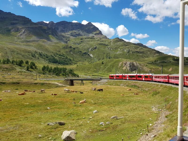 Escapada al Bernina Express 20180882