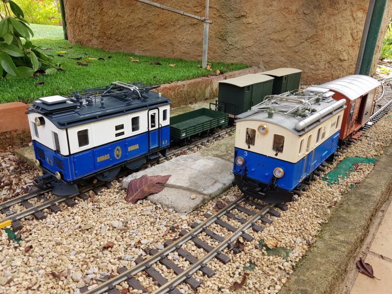 Transformació locomotora cremallera LGB  - Página 5 20180922
