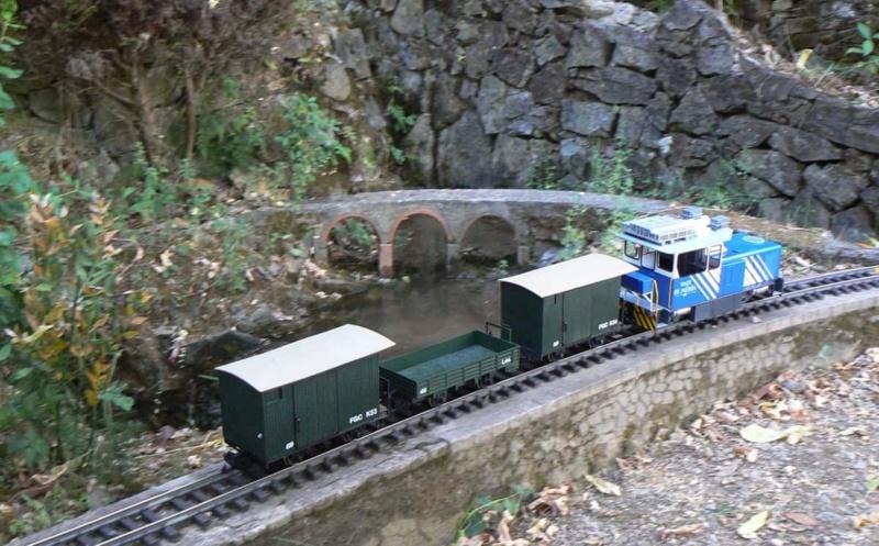 Companyia KTK (Carrils i trens de Cargolia) - Página 39 Fb_img31