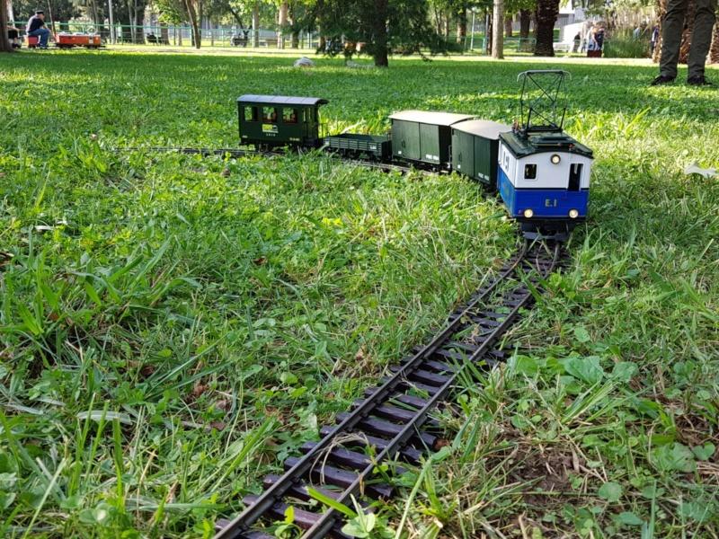 Transformació locomotora cremallera LGB  - Página 7 Img-2051