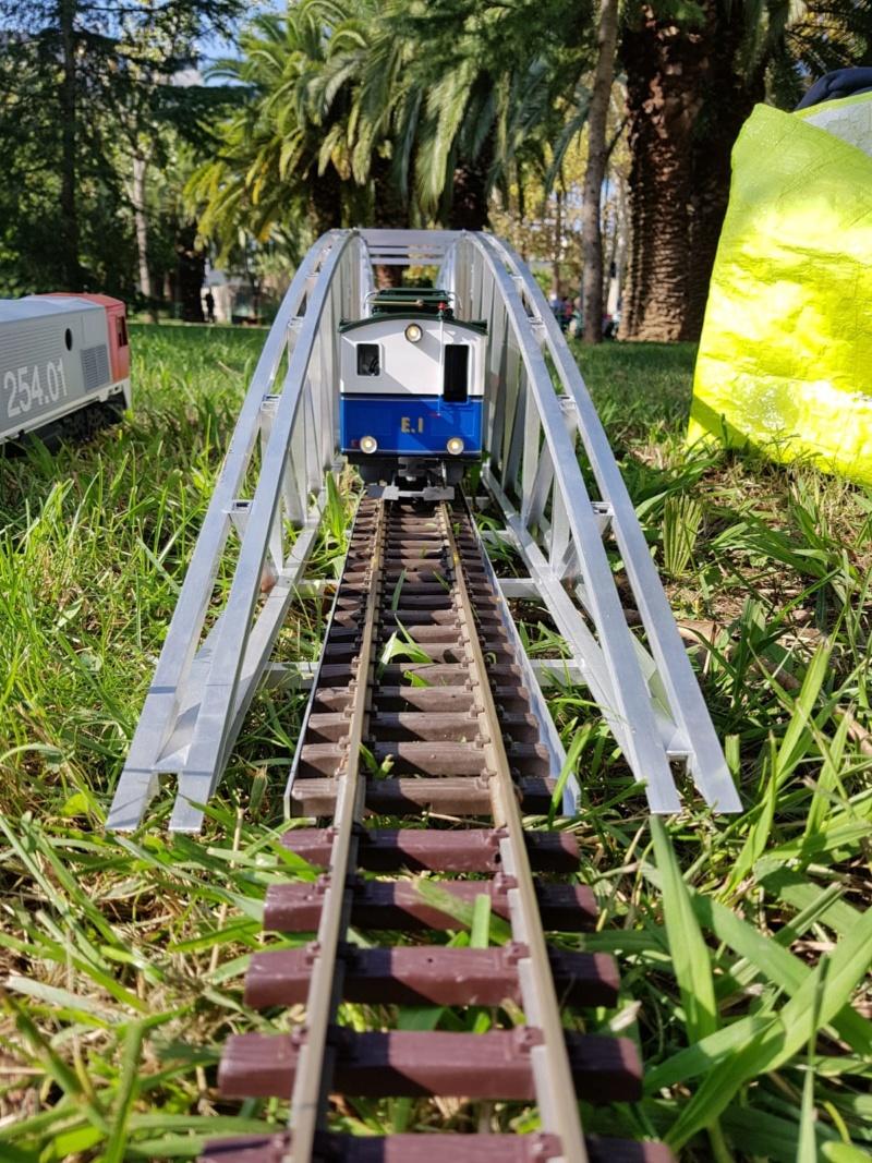 Transformació locomotora cremallera LGB  - Página 7 Img-2052