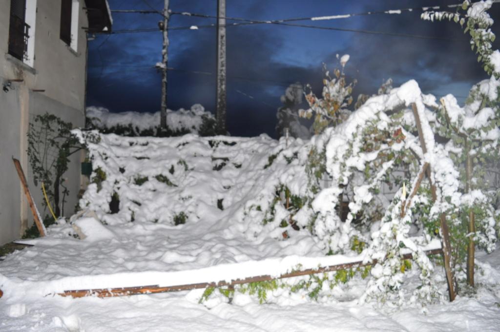 Tempête de neige Novemb25