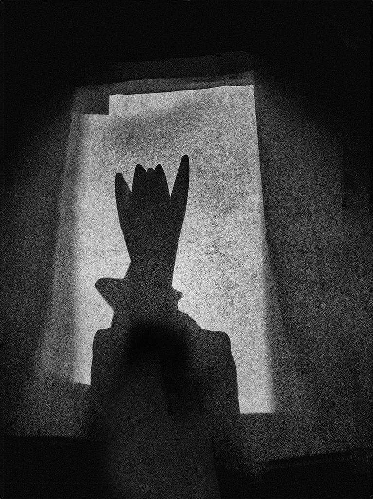 """"""" l'ombre de la jacinthe... """" _1270012"""