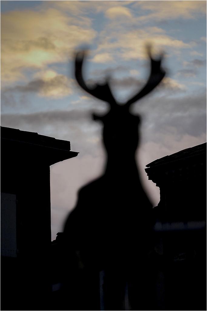 """"""" Rudolph, coté obscure de la force..."""" _1350210"""