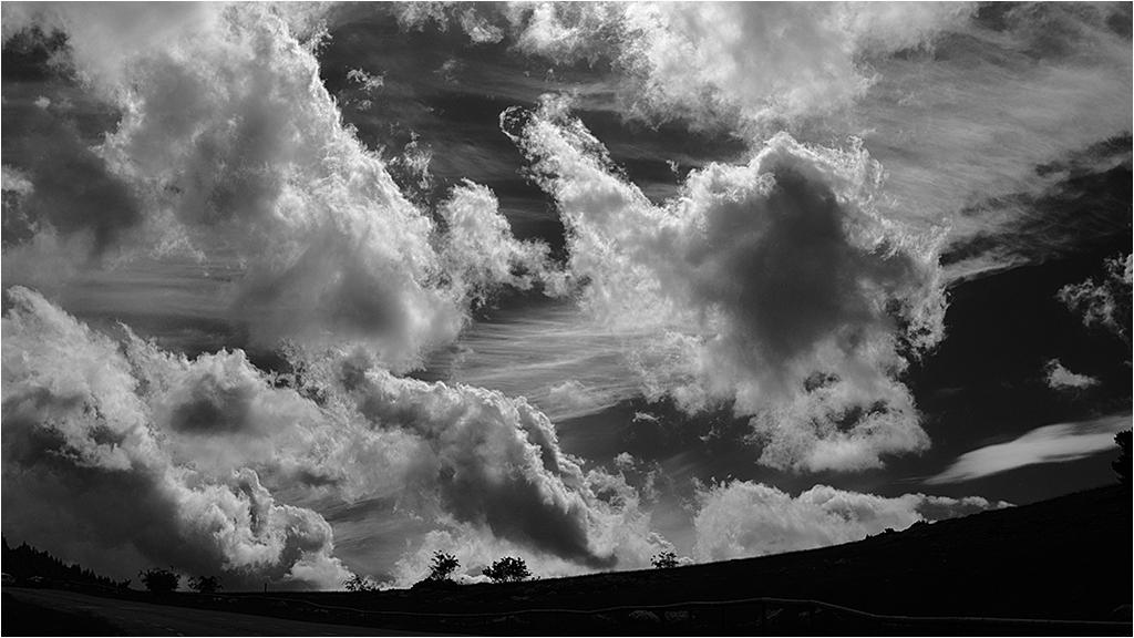 """ a ciel ouvert "" _1370610"
