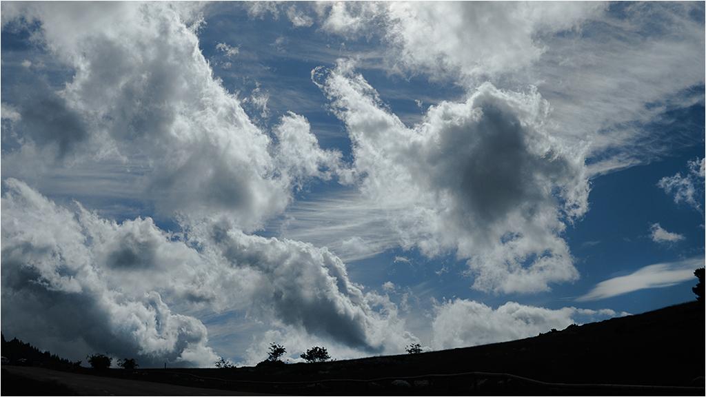 """ a ciel ouvert "" _1370612"