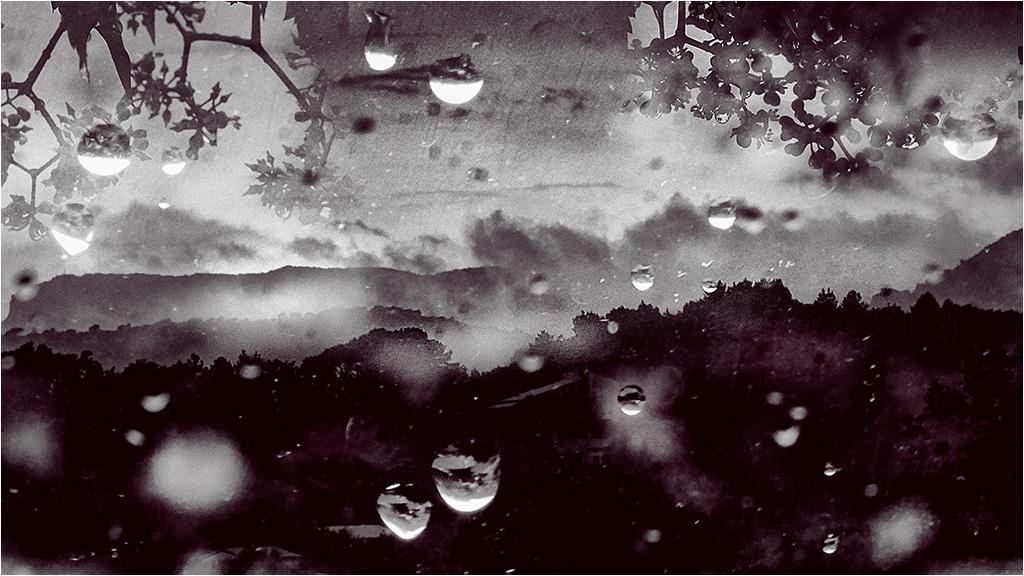 """"""" Après la pluie..."""" _1370713"""