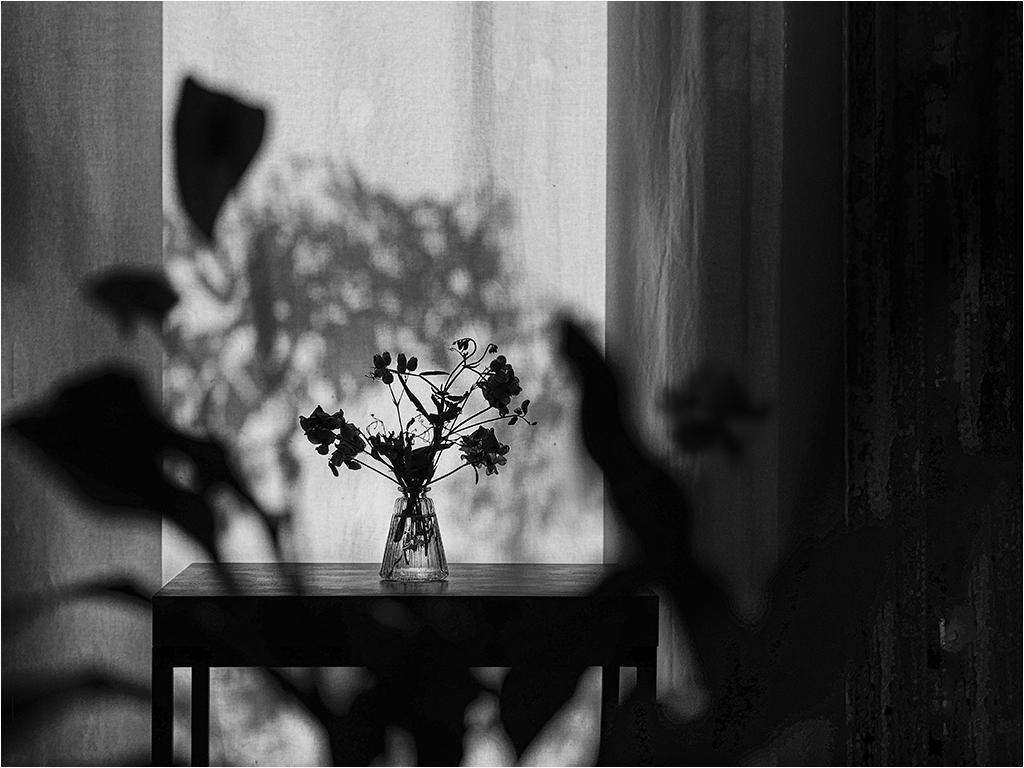 """"""" Le bouquet """" _1370718"""