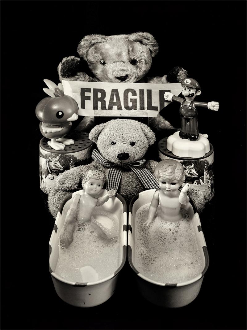 """"""" FRAGILE """" + ajout couleur _dsf7211"""