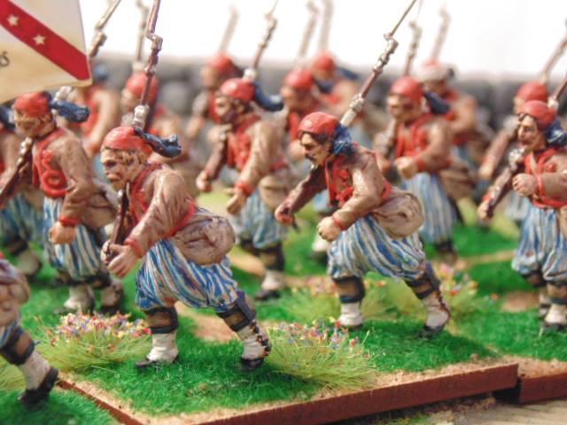 [ACW] Zouaves confédérés 2017-030