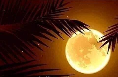 Luna hermosa Luna12