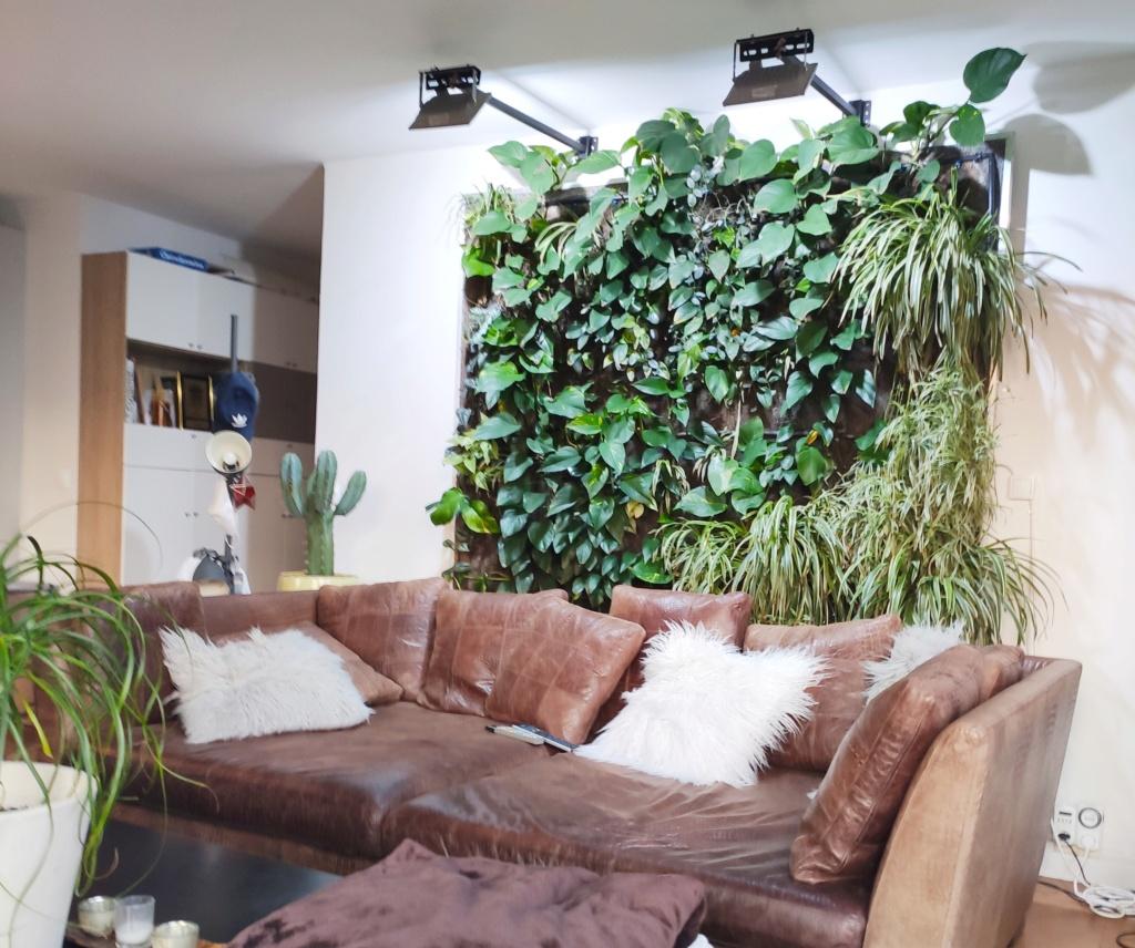 Mur Végétal horizontal, bac à côté? 16002812