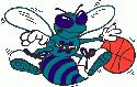 Masters of Hoops - Centro de Datos Hornet10