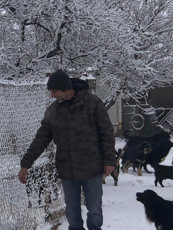 SERBIE - Refuge Bella - Arrivée du 13 janvier 2019 - Page 3 49253410