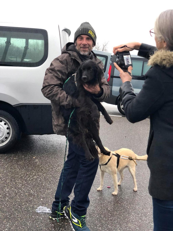 SERBIE - Refuge Bella - Arrivée du 13 janvier 2019 - Page 3 49948410
