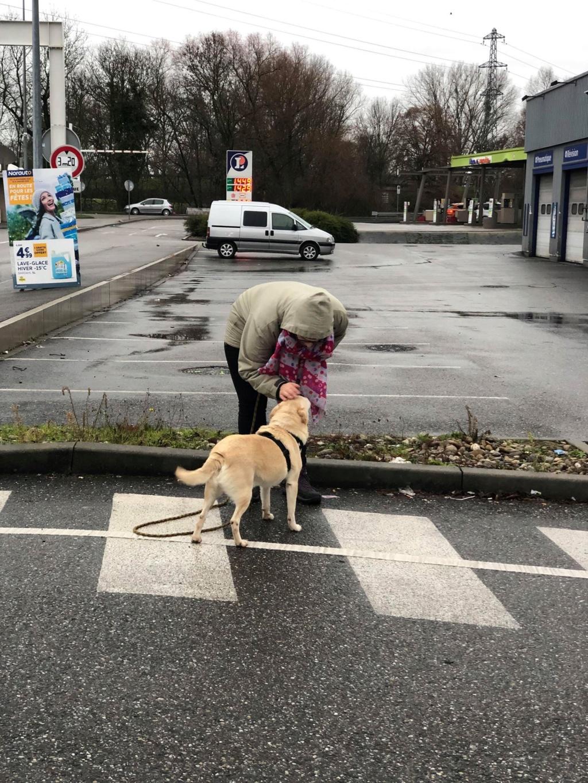 SERBIE - Refuge Bella - Arrivée du 13 janvier 2019 - Page 3 50012310