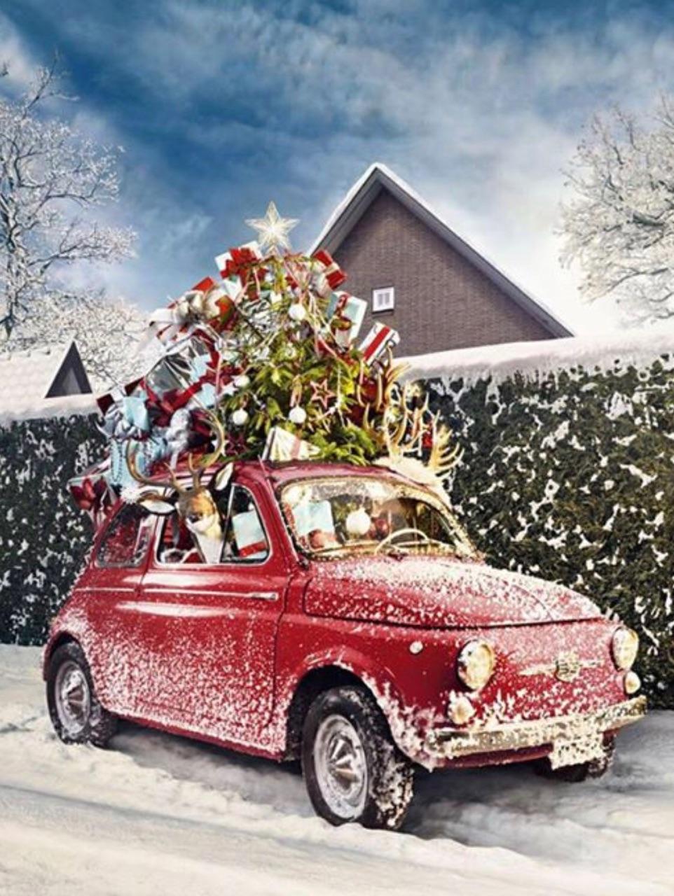 Buon Natale Img_3210