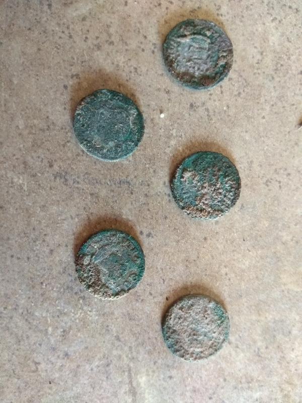 opiniones del minelab equinox 600 y 800 Img_2012