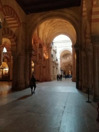Andalusia - Granada, Cordoba e Siviglia  Img_2029
