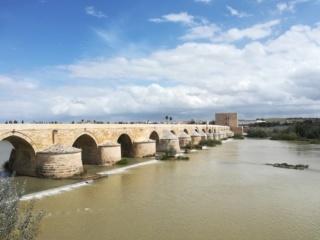 Andalusia - Granada, Cordoba e Siviglia  Img_2032
