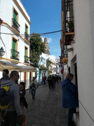 Andalusia - Granada, Cordoba e Siviglia  Img_2034