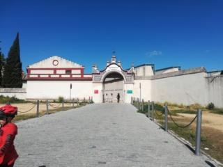 Andalusia - Granada, Cordoba e Siviglia  Img_2036