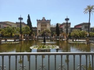 Andalusia - Granada, Cordoba e Siviglia  Img_2039