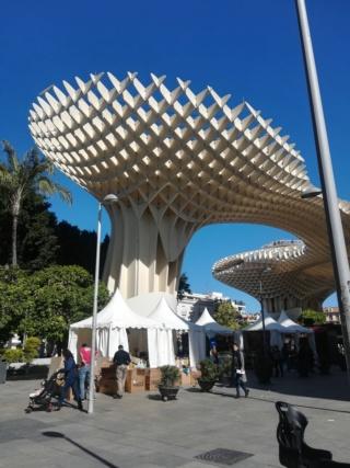 Andalusia - Granada, Cordoba e Siviglia  Img_2043