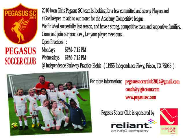 PEGASUS SC looking for 1-2 players and Goalie Oyuncu14