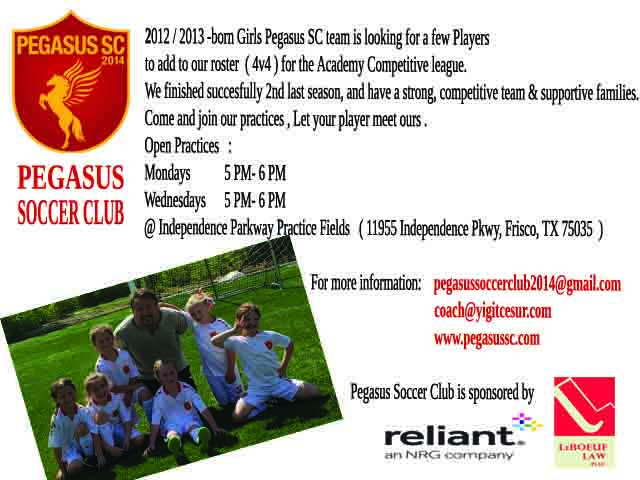 2012-13 PEGASUS SC looking for 1-2 players  Oyuncu15