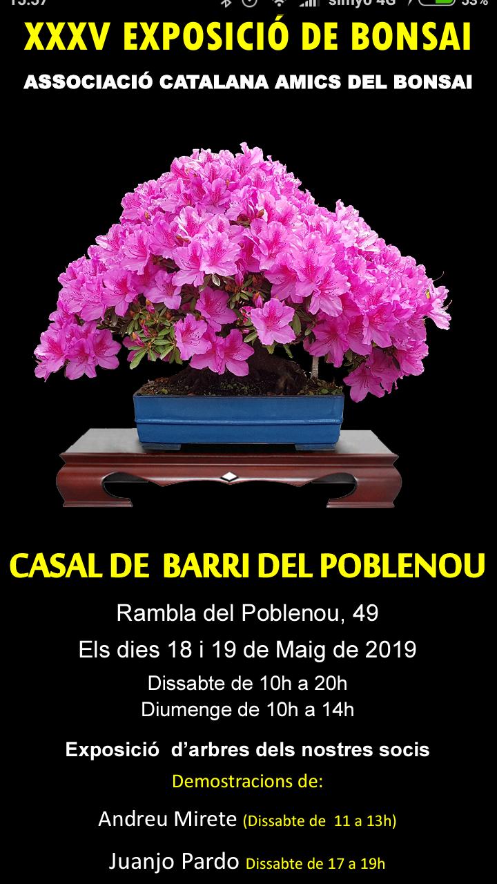 EXPOSICIONES Cartel13
